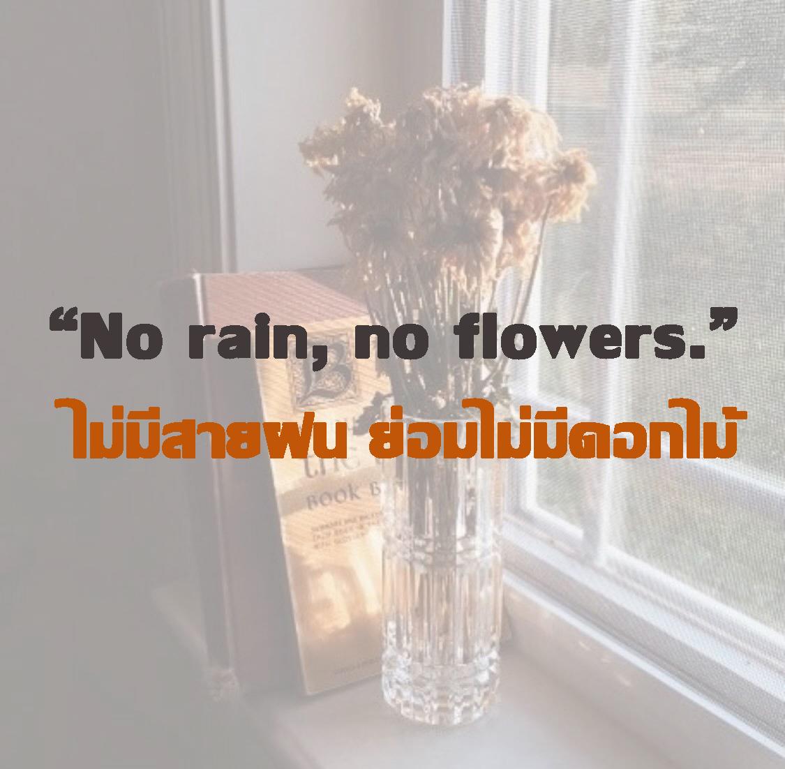 ไม่มีสายฝน ย่อมไม่มีดอกไม้